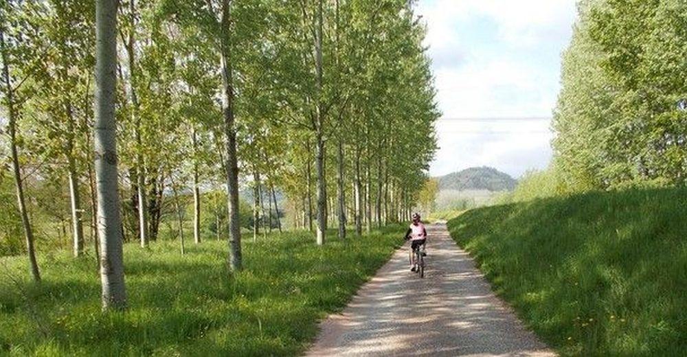 ciclista sulla Ciclabile Puccini sul fiume serchio nella Piana di Lucca