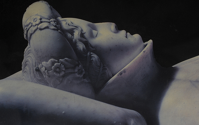 particolare del monumento funebre di ilaria del carretto