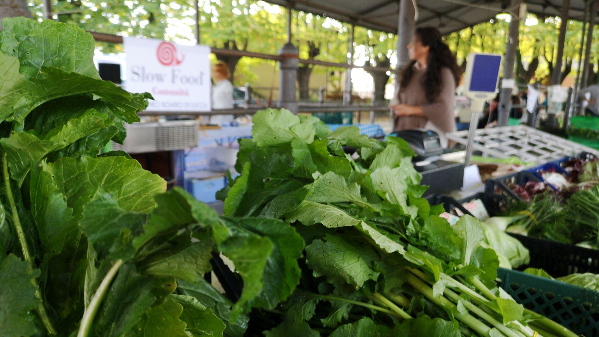 market day at Foro Boario in Lucca